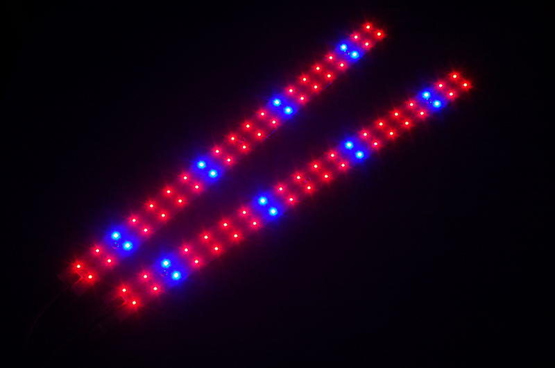 SolStrip X2 Red/Blue